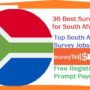 36 Best Survey Sites for South Africa – Top South Africa Paid Survey Jobs