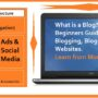 What is a Blog and How Blogger Do Blogging (Ultimate Guide)